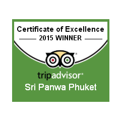 Excellence for the year 2010 – 2015